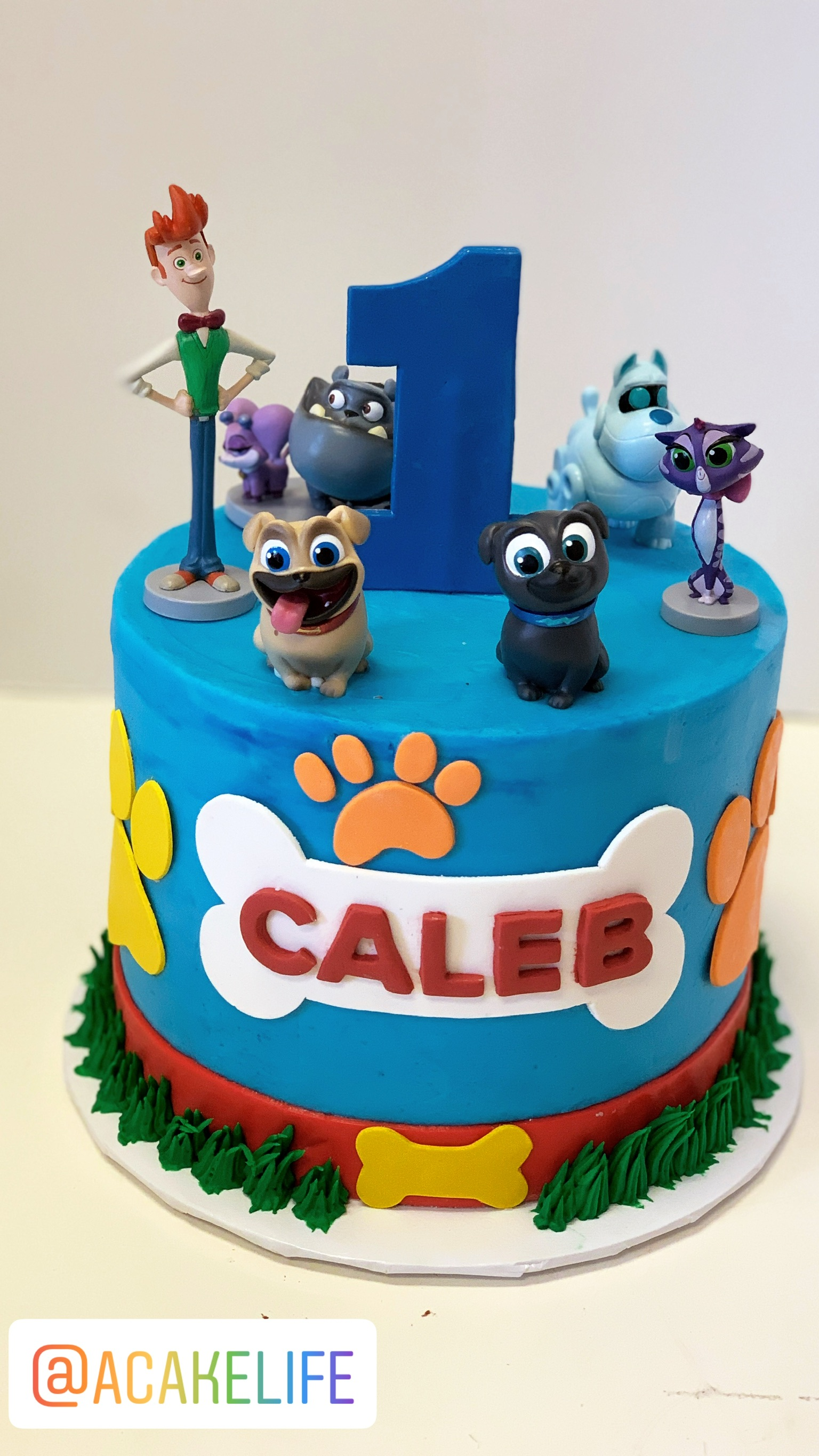 Puppy Dog Pals Cake