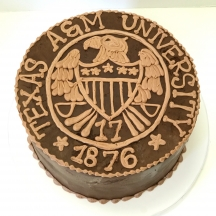 Texas A&M Grooms Cake