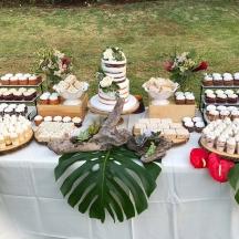 Succulent Dessert Table 2