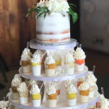 Cake Shooter Wedding Cake
