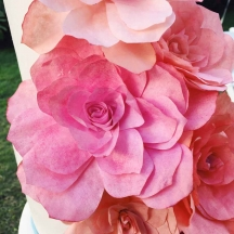 Coral Tissue Paper Flowers 2