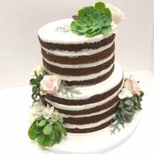 Naked Cake witih Succulents