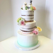 Semi Naked Drip Cake with Ombre