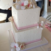 Square Buttercream with Pink Plumerias