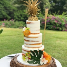 Tropical Semi Naked and Gold Pineapple