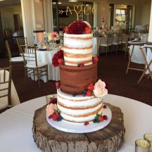 Vanilla and Chocolate Naked Cake