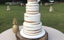 Semi Naked 4-Tier Cake
