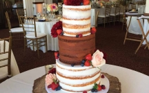 Vanilla and Chocolate Naked Cake