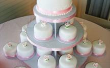 Sayaka's Mini Cakes