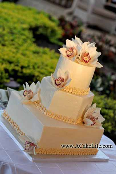 Multi Shaped Cakes