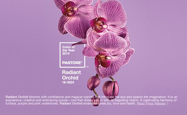 RadiantOrchid1